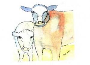 Greeting Card Cows